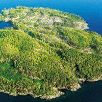 岛是海心上的疤